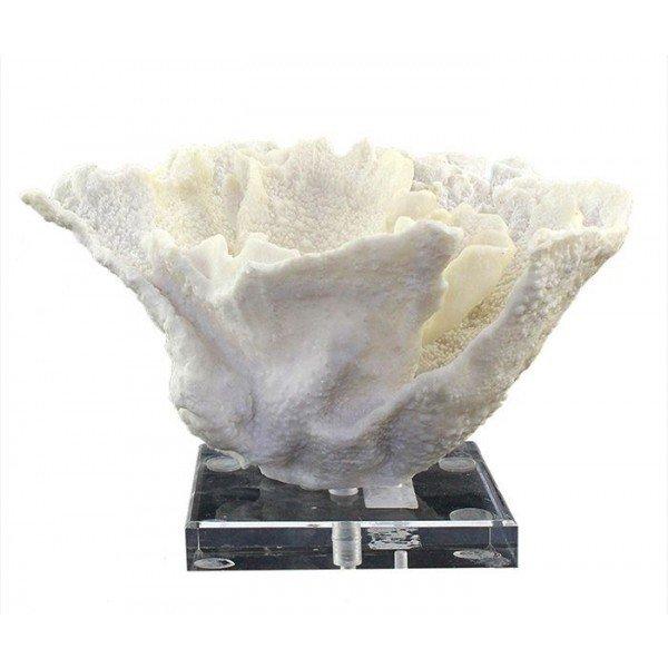 coral decorativo em resina branco 20877311 1 20181210150813