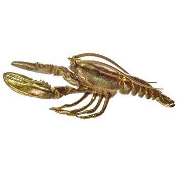 lagosta decorativa de resina dourada g 20878089 1 20190402164437