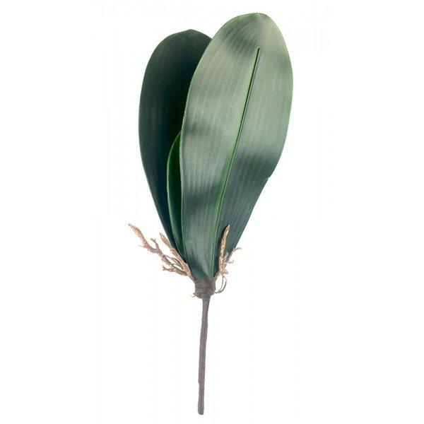 folhagem para orquidea phalaenopsis c 3 folhas 20876785 1 20181210150839
