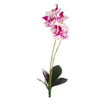 haste orquidea phalaenopsis toque real c folhas 50cm branco purpura 20879135 1 20190822163503