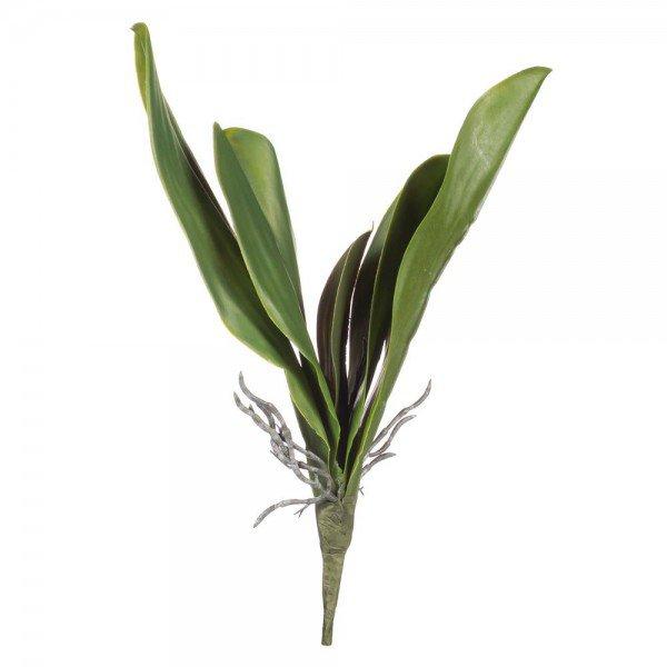 folha orquidea 5 folhas c raiz toque real 36cm 20879127 1 20190822164122