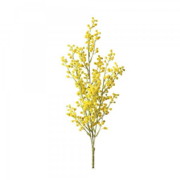 flor_acacia_amarela