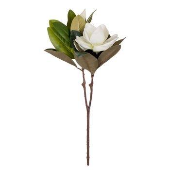 flor_magnolia_branca