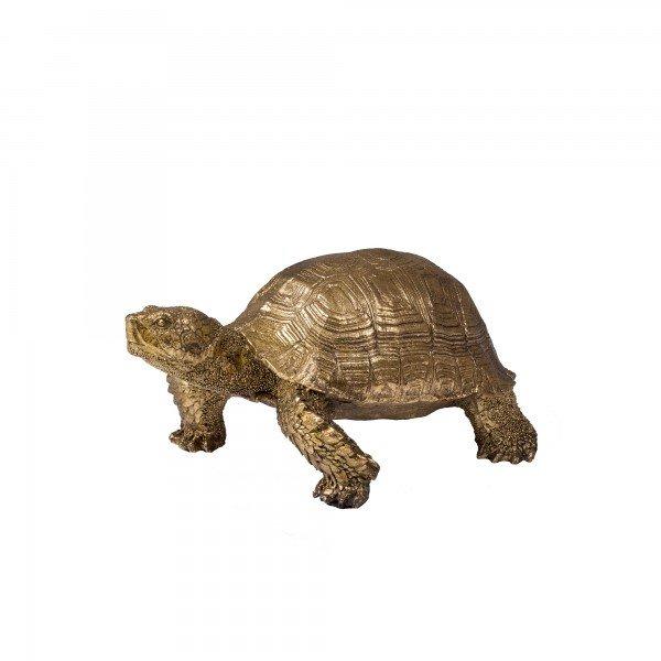 tartaruga_dourada