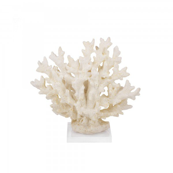 coral decorativo bege