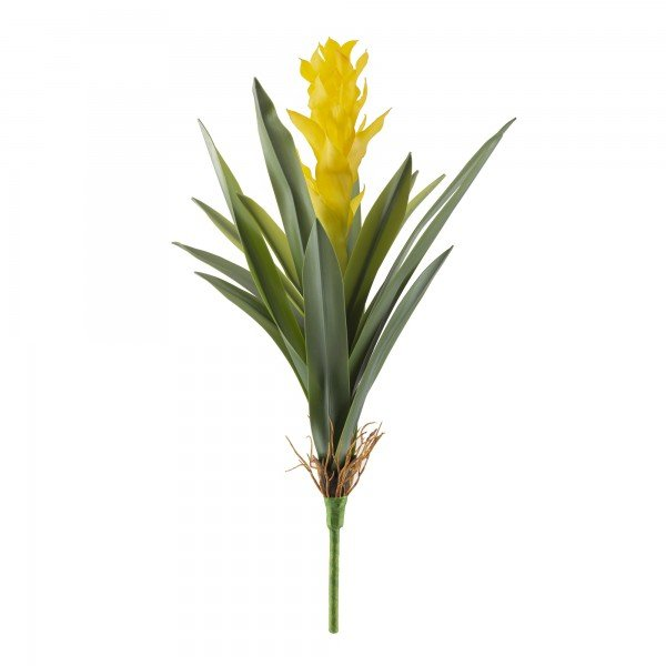 bromelia amarela grande