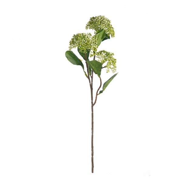 galho_semente_verde
